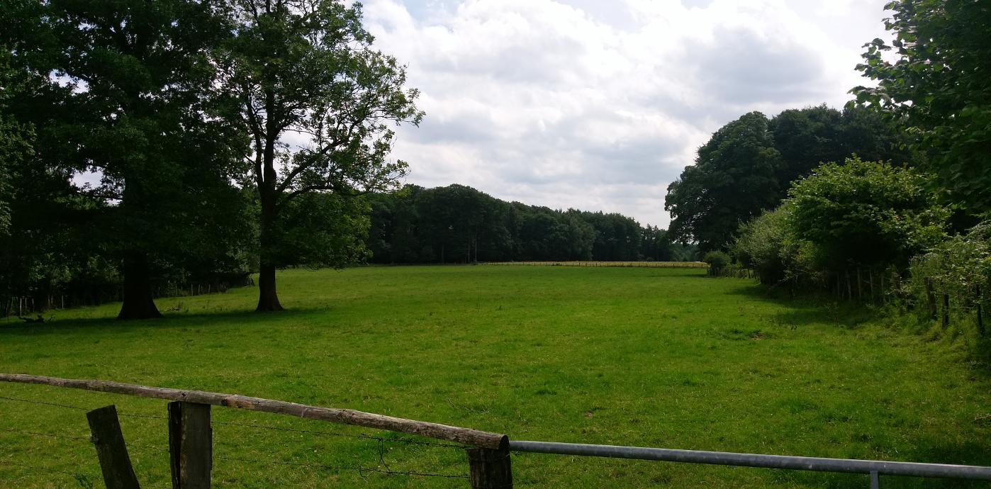 Erkunden Sie den Naturpark Aukrug - Hennstedts Umgebung